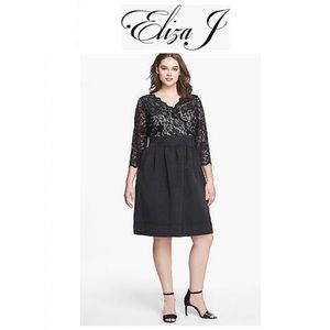 Eliza J Fit and Flare Lace and Faille Dress Blk 16